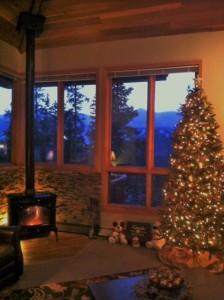 Living Room showing ski slopes
